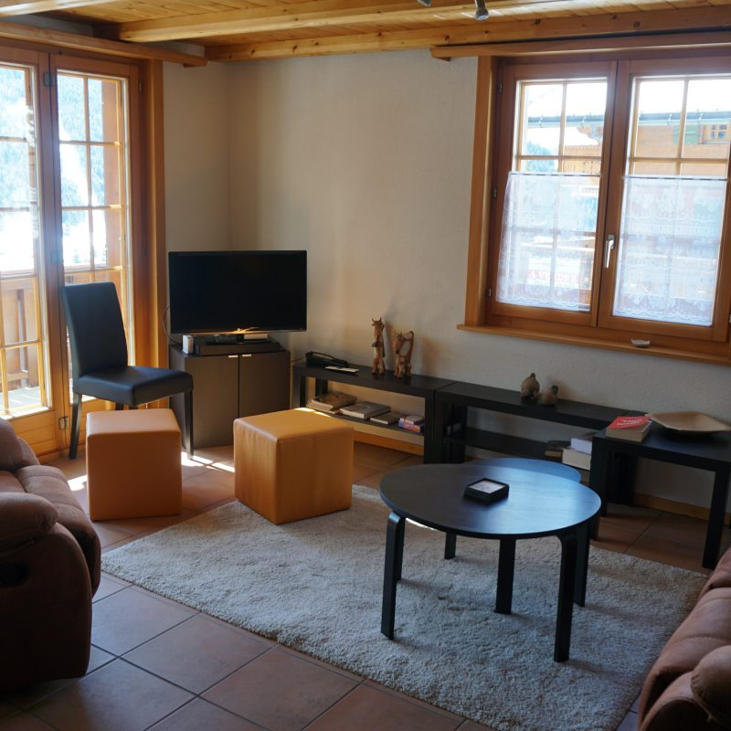 CONDOMINIUM PPE BELZEBUTH BSuperb Apartement With Beautiful view Massif Diablerets and the Village