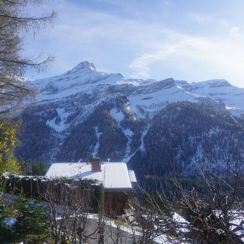 CONDOMINIUM PPE PRE-RIAUX BBEAUTIFUL APARTMENT MAGNIFICIENT VIEW ON THE VILLAGE AND THE MASSIF DIABLERETS WITH ONE PARKING PLACE